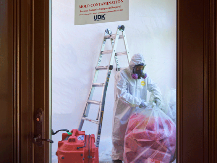 Mold Containment Utah Kleenup